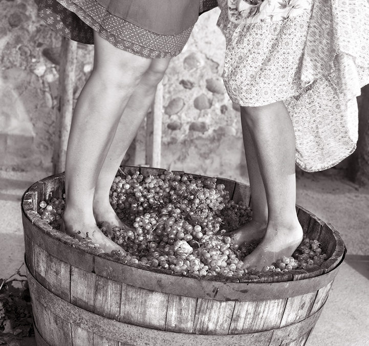 The Importance Of Wine In The Dubrovnik Republic